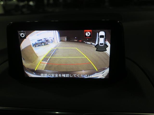 22XD プロアクティブ Mナビ 地デジ ETC Bカメラ AW(23枚目)