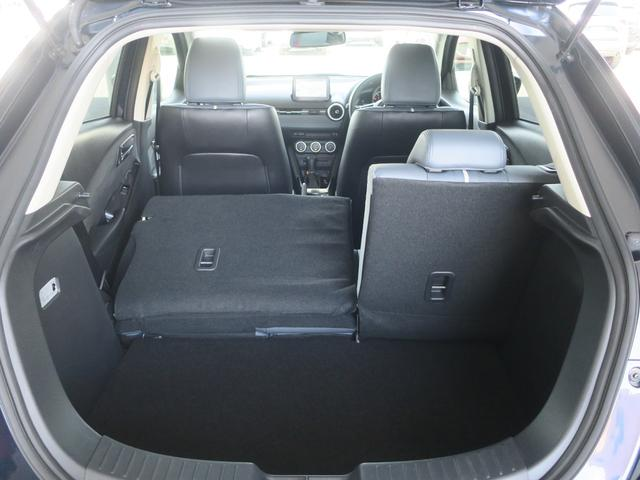XD Lパッケージ 4WD Mナビ 地デジ 360° 15AW(32枚目)