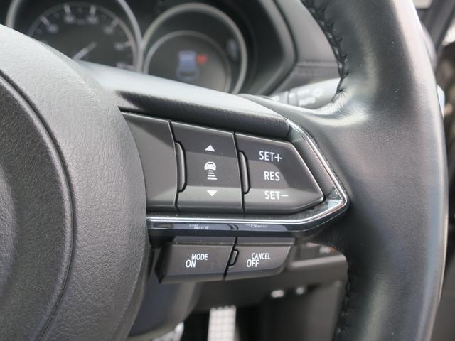 25S Lパッケージ 4WD Mナビ 地デジ ドラレコ 19AW パワーゲート ワンオーナー車 全周囲カメラ DVD再生 ナビTV LEDライト メモリーナビ 4WD ETC アイドリングストップ キーレス シートヒータ プリクラ(26枚目)