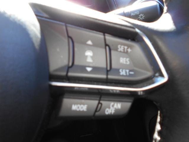 1.5 XD ノーブル ブラウン ディーゼルターボ 4WD (14枚目)