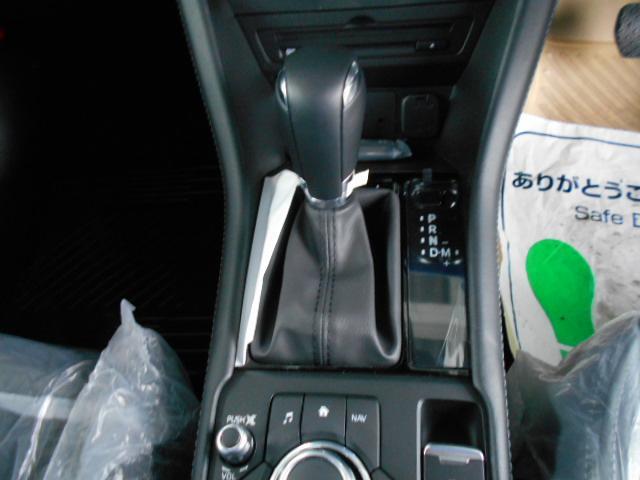 XDプロアクティブ Sパッケージ ディーゼル 360度モニタ(16枚目)