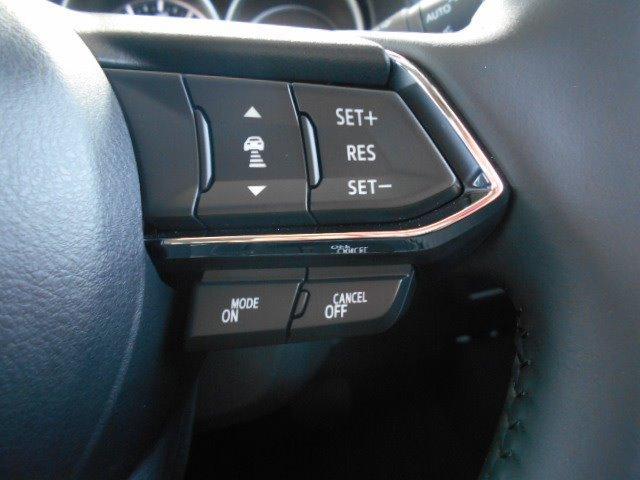XD プロアクティブ 360°ビューモニター 8インチモニター CD DVD 地デジ 全車速追従機能付レーダークルーズ スマート・ブレーキ・サポート 19インチアルミ パワーバックドア パワーシート LEDヘッドライト(18枚目)