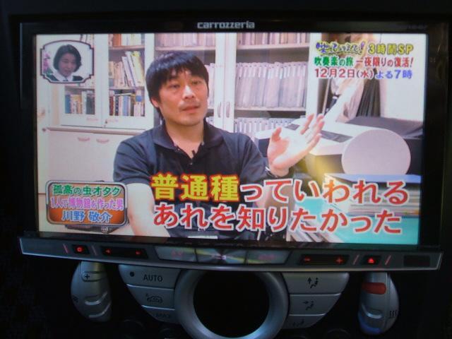 クーパーS 社外HDDナビ バックモニター 地デジTV(19枚目)