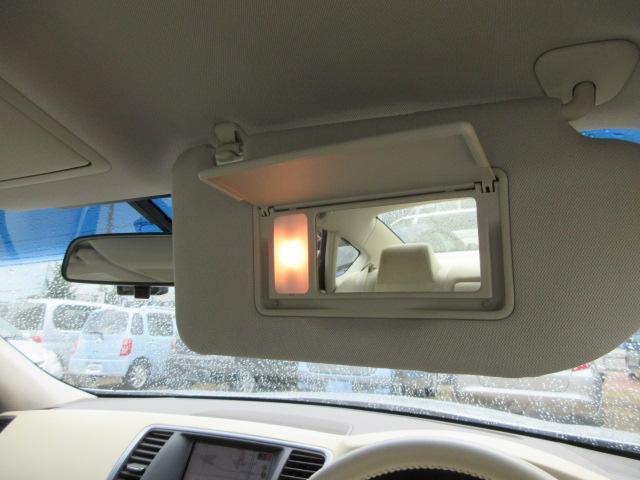 250XE HDDナビ バックカメラ 車検整備&保証付(18枚目)