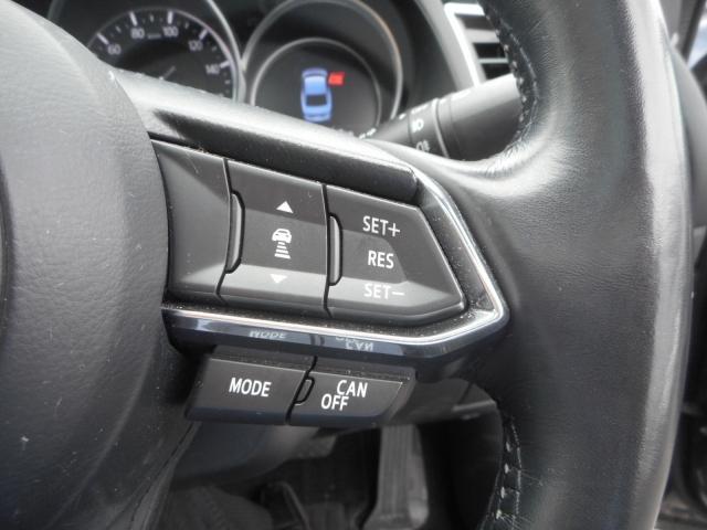 2.2 XD Lパッケージ ディーゼルターボ 4WD サンル(7枚目)