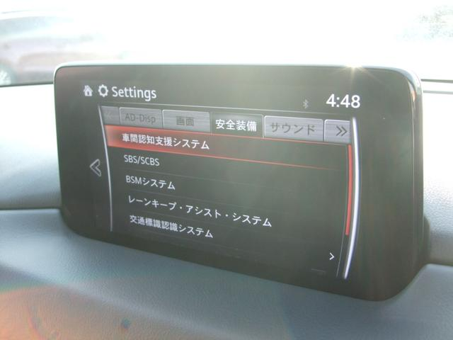 2.2 XD プロアクティブ ディーゼルターボ 4WD ナビ ETC(45枚目)