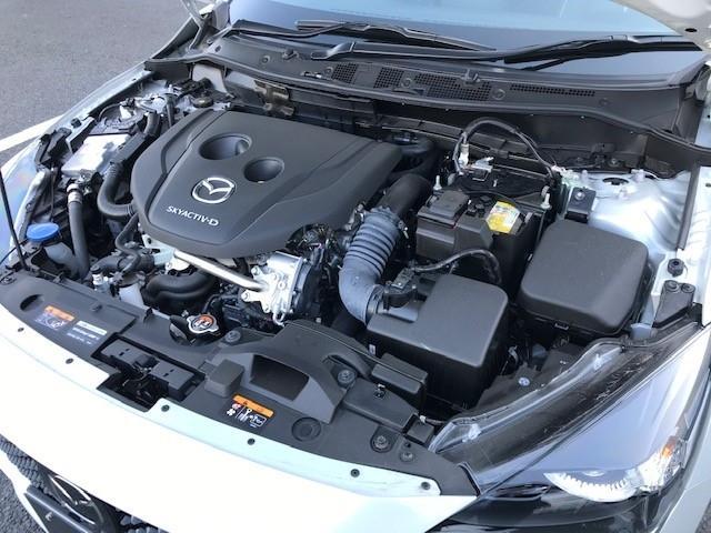 1.5 XD L-pkg ディーゼルターボ 4WD サポカーSワイド(9枚目)