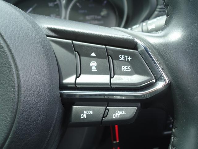 XDプロアクティブ 4WD SBS フルセグナビ 360度モニター レーダークルーズコントロール ステアリングヒーター ETC パワーシート コーナーセンサー(8枚目)