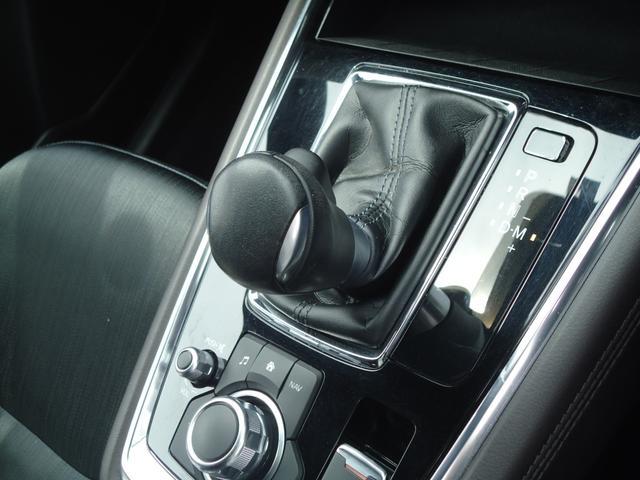 XDプロアクティブ 4WD SBS フルセグナビ 360度モニター レーダークルーズコントロール ステアリングヒーター ETC パワーシート コーナーセンサー(48枚目)