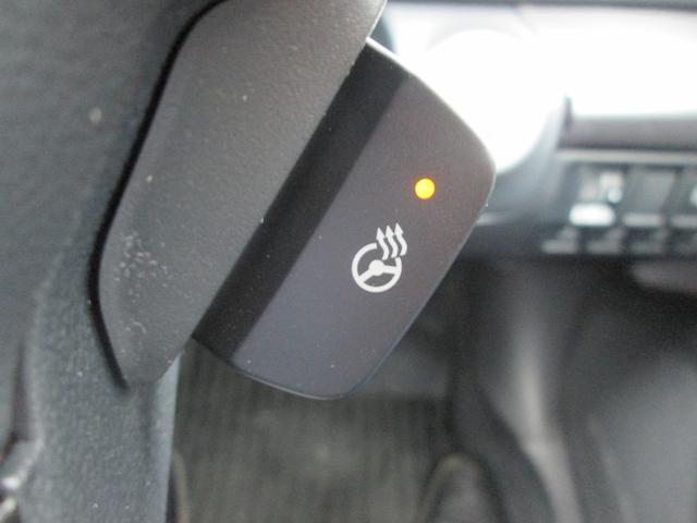 スバル アウトバック X-アドバンス 純正SDナビ Pシート Sヒーター ETC
