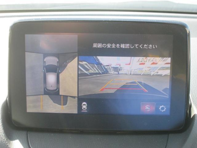 XD プロアクティブ Sパッケージ ナビTV360°モニター(11枚目)