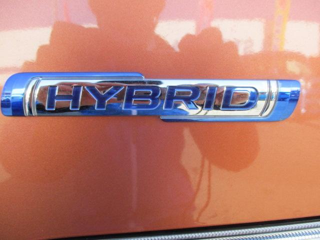 HYBRID FX(40枚目)