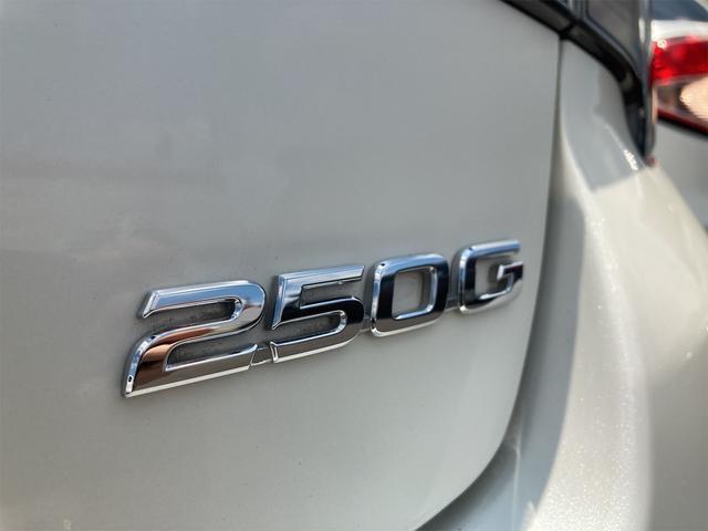 250G 水戸南センターの特選車!! 10月9日からのイベント特選車!! プリクラ LDA LEDヘッドランプ スマートキ- イモビライザー オートライト パワーシート(22枚目)
