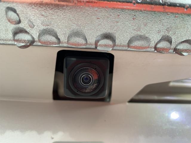 カスタムG-T 両側自動ドア 衝突軽減装置(21枚目)