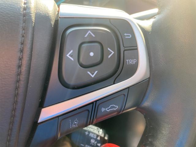 プレミアム アドバンスドパッケージ 4WD パワーバックドア クルコン ETC スマートキー(10枚目)