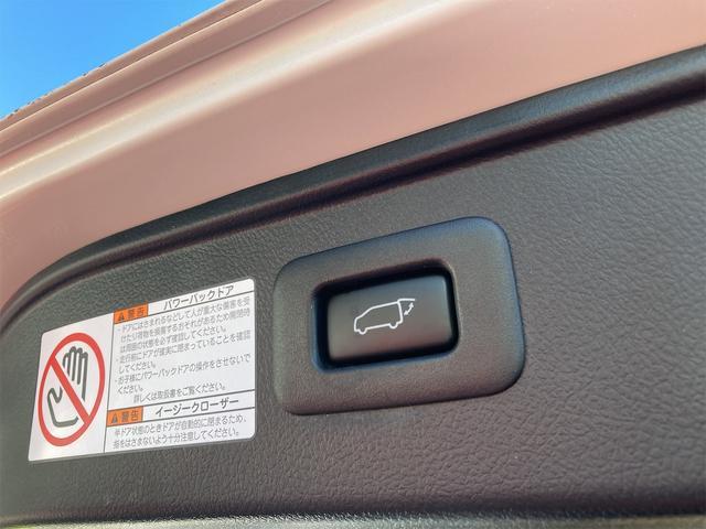 SR 4WD 両側パワースライドドア ドラレコ バックカメラ パワーバックドア(22枚目)