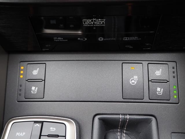 IS300h Fスポーツ 4WD ワンオーナー禁煙車 セーフティシステムプラス OP・サンルーフ OP・三眼LEDヘッドランプ OP・マークレビンソン OP・BSM/RCTA OP・ソナー OP・寒冷地仕様車 OP・ドラレコ(39枚目)