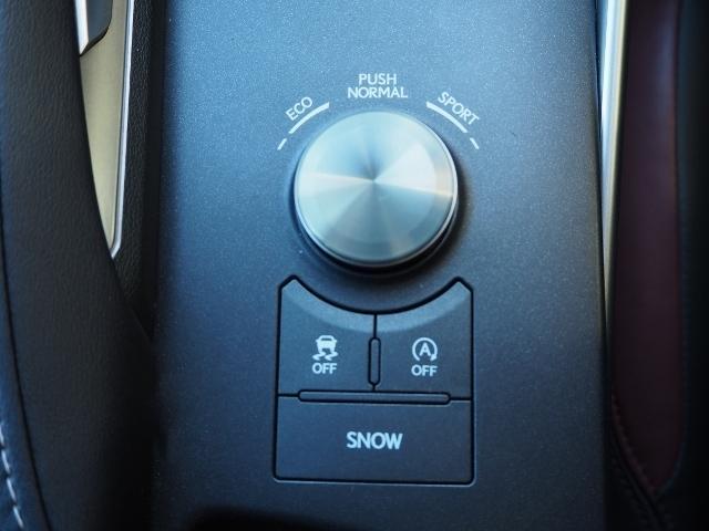 IS200t バージョンL ワンオーナー 禁煙車 セーフティシステムプラス OP・マークレビンソン OP・サンルーフ OP・BSM/RCTA OP・ソナー OP・18AW ブラックツートン革シート メーカーSDナビ Bカメラ(42枚目)