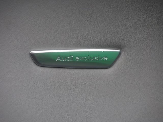 「アウディ」「アウディ TT RSクーペ」「クーペ」「栃木県」の中古車16