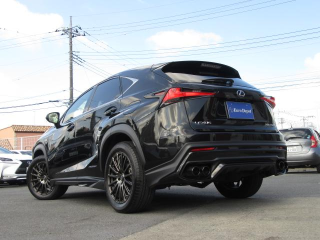 山岳路や石畳、サーキットなど世界中のあらゆる道で試走し、改善されたNXの走りのセッティングは、SUVでありながら、都市の中を機敏に駆け抜けることが出来るハンドリング性能に仕上がっています。