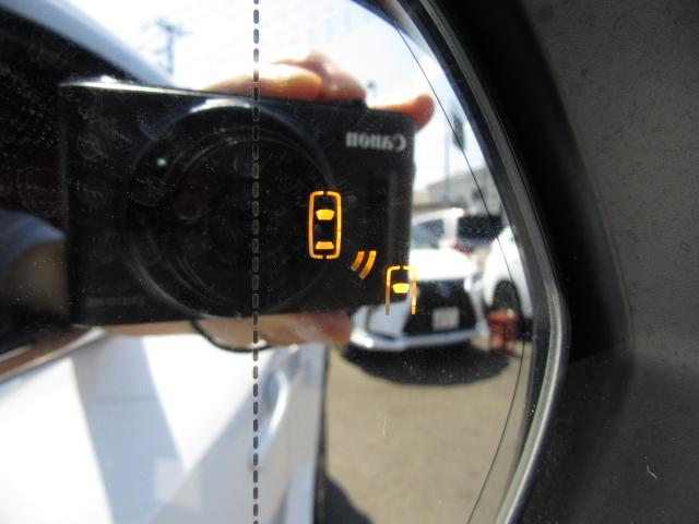 NX300hFスポ4WD 1オナ赤革PSR パノラV HUD 後期 4WD 1オナ 赤革パノラマSR 純ナビ地デジ LSS+ パノラミックV BSM PKSB 禁煙車 TVジャンパ Dレコーダ AHS RCTA カラーHUD 後席電動 AC100W 3眼LED(63枚目)