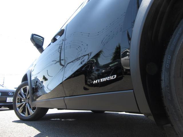 UX250hFスポ4WD 1オナ赤革 パノラV カラーHUD 4WD 1オナ赤革 ベンチ&ヒータS 純ナビ地デジ LSS+ パノラミックV BSM PKSB カラーHUD 禁煙車 Dレコーダ AHS AC1500W ルーフR PBドア 3眼LED 18AW(48枚目)
