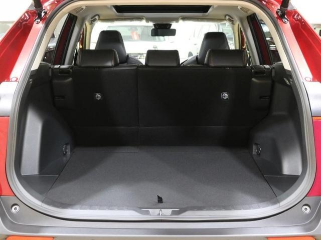 2.0 アドベンチャー 4WD 新車未登録 パノラマムーンル(10枚目)