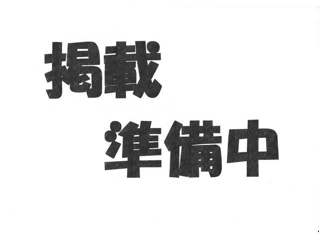 Gセレクション・シートヒーター・アルミ・ライトレベライザー(6枚目)