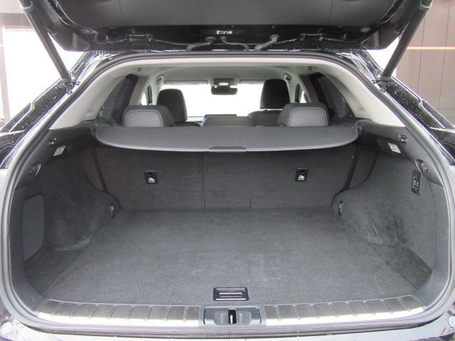 「レクサス」「RX」「SUV・クロカン」「群馬県」の中古車15
