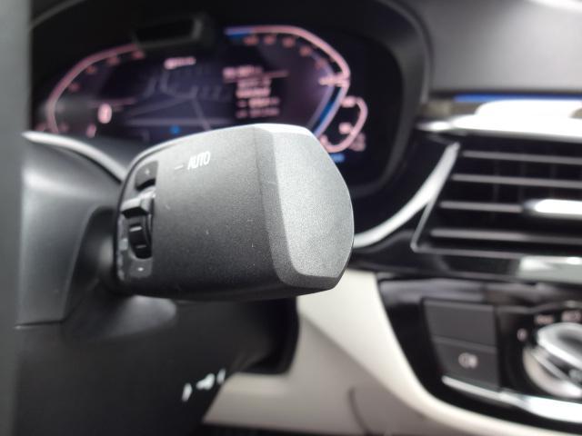 530e Mスポーツ エディションジョイ+ HDDナビ ACC エクスクルージブナッパレザーパッケージ ベンチレーションシート ステアリングアシスト  ヘッドアップディスプレイ パーキングアシスト Mスポーツブレーキ 19インチAW(54枚目)