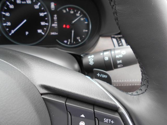 XD Lパッケージ 4WD メーカー8インチナビDTV 360°ビューモニター BOSEサウンドシステム 本革シート シートベンチレーションヒーター アドバンストスマートシティブレーキサポート LED ETC ディーラーデモカー(38枚目)
