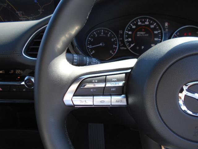 20Sプロアクティブ ツーリングセレクション シグネチャースタイルエアロ メーカー8.8インチナビDTV 360°ビューモニター セーフティパッケージ シートヒーター レーダークルーズ ヘッドアップディスプレイ LED ETC ディーラーデモカー(38枚目)