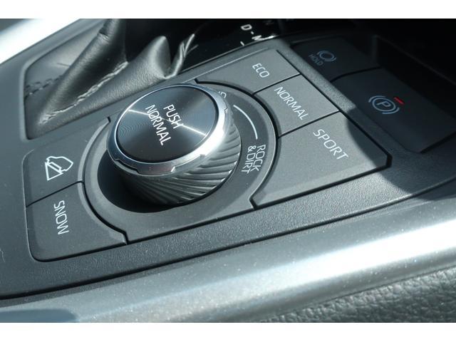 アドベンチャー 4WD 衝突軽減ブレーキ レーンアシスト ダウンヒルアシスト クリアランスソナー 電動リアゲート エンジンスターター ステアリングヒーター(39枚目)