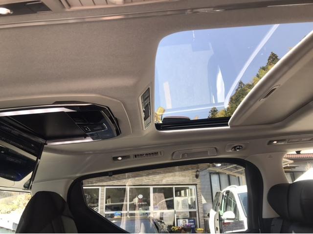 SR-C本革大型ナビ 後席モニター 3眼LED Wサンルーフ(9枚目)