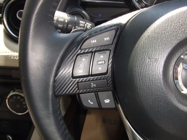 13SツーリングL pkg 4WD CD&TVレス(8枚目)