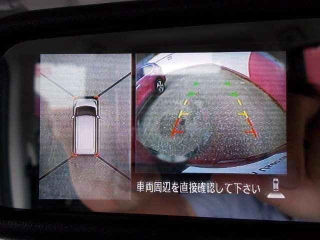 660 ハイウェイスター Xターボ ナビ&AVM&ドラレコ&エマブレ(10枚目)