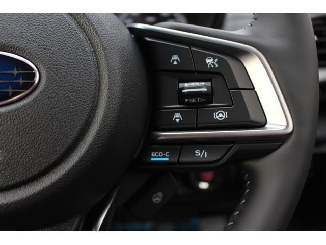 アドバンス 黒本革シート ルーフレール パワーリヤゲート 視界拡張 ナビ バックカメラ ETC マット 登録済み未使用車(18枚目)