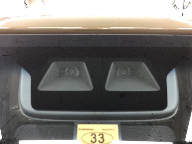 スタンダードSAIIIt 4WD 5速マニュアル(19枚目)