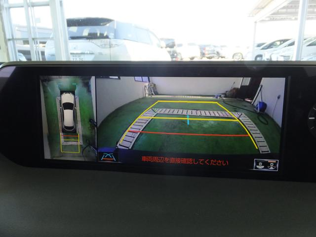 UX250h Fスポーツ本革ナビ全周囲カメラ(17枚目)