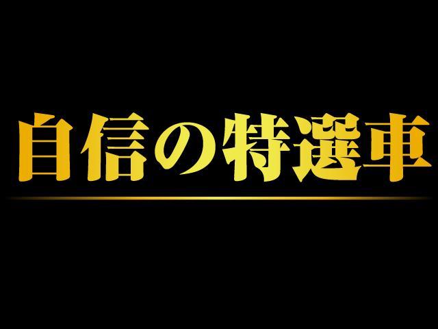 Gプレミアムパッケージ ロックフォード 障害物センサ ワンオーナ(4枚目)