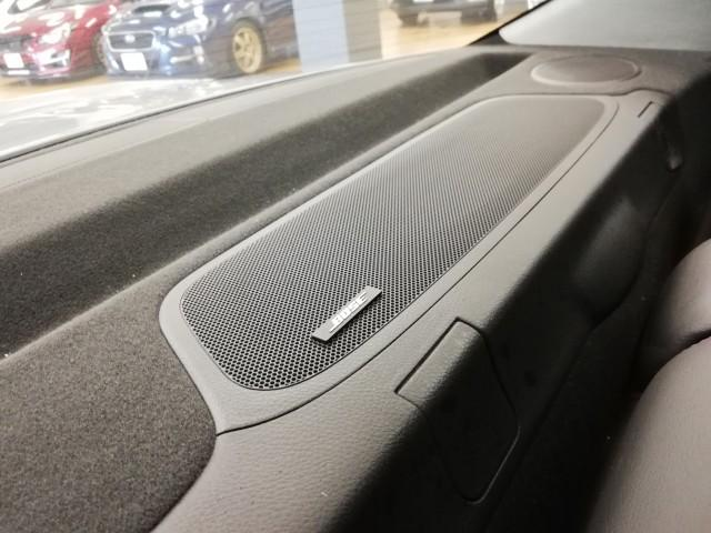 ユーロS 4WD 半革シート 純正HDDナビ オートクルーズ(17枚目)
