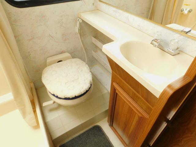 マリントイレ 洗面台 ドレッサー ルーフライト付きで明るい室内
