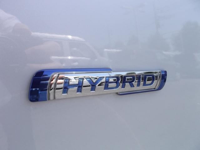 スティングレー HYBRID X(7枚目)