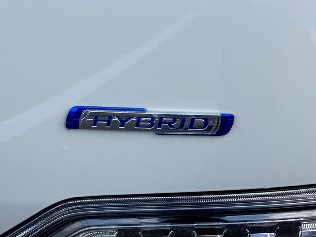 スティングレー HYBRID X 2型 衝突被害軽減ブレーキ(10枚目)