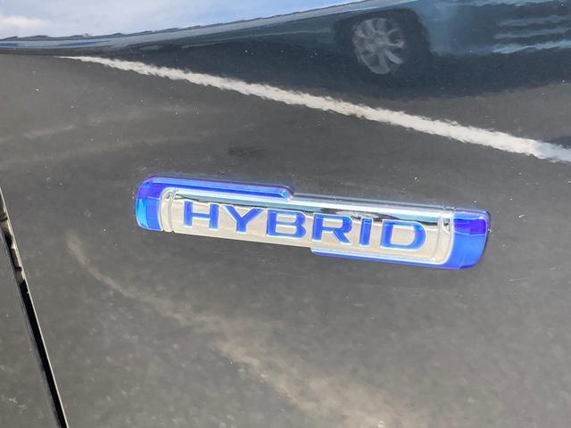 スティングレー HYBRID X 2型 LEDヘッドランプ(9枚目)