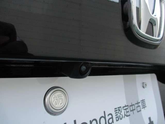 EX・ブラックスタイル ナビ バックカメラ ETC(19枚目)