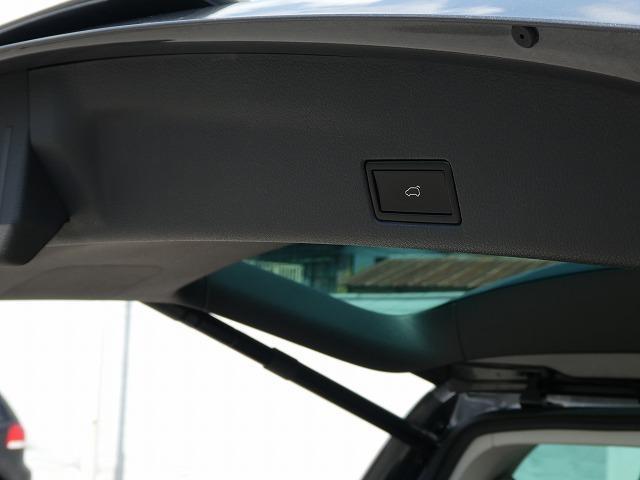 グレンツェン ワンオーナー 限定車Glaenzen パワーテールゲート バックカメラ SDナビ ETC キセノンヘッドライト クルーズコントロール(20枚目)