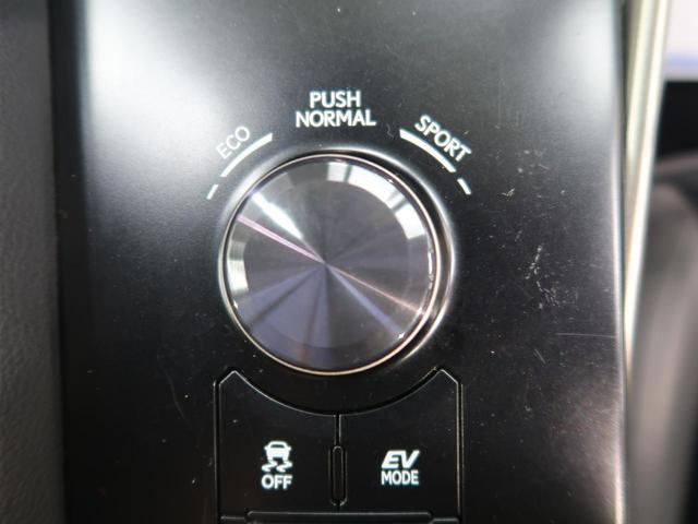 IS300h 禁煙車 メーカーSDナビ ハーフレザー(10枚目)