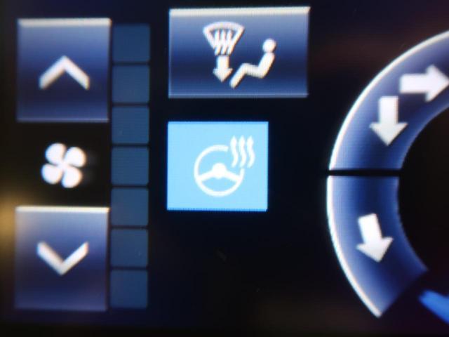Fバージョン 後期 禁煙車 パノラミックビューモニター セーフティセンスP クリアランスソナー ITSコネクト BSM OP18AW LEDヘッド フォグ AFS メーカーナビ シートベンチレーション ETC2.0(56枚目)