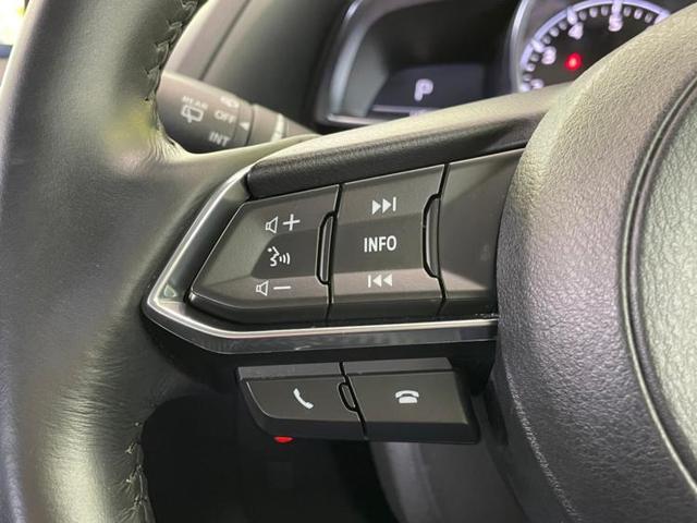 15Sプロアクティブ 純正 メモリーナビ/車線逸脱防止支援システム/パーキングアシスト バックガイド/ヘッドランプ LED/ETC/EBD付ABS/横滑り防止装置/アイドリングストップ/TV/Bluetooth接続 記録簿(15枚目)